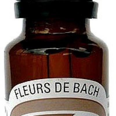 Composition n° 06 : Vitalité, 20 ml, Hautes-Alpes, Bio