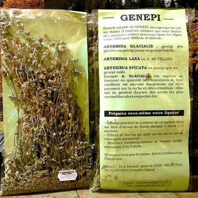 Génépi, sachet de 8 g, Hautes Alpes