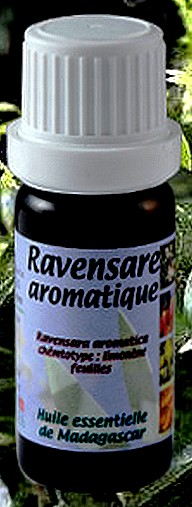 Ravensare aromatique asterale
