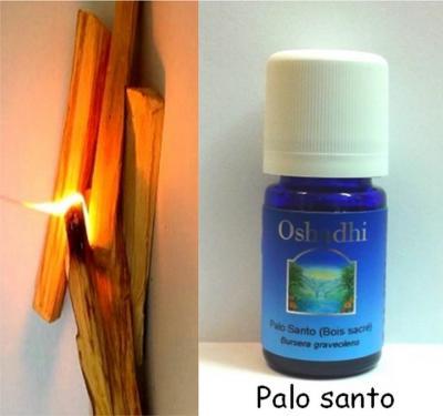 Bois sacré ou Palo santo (Huile essentielle), 5 ml