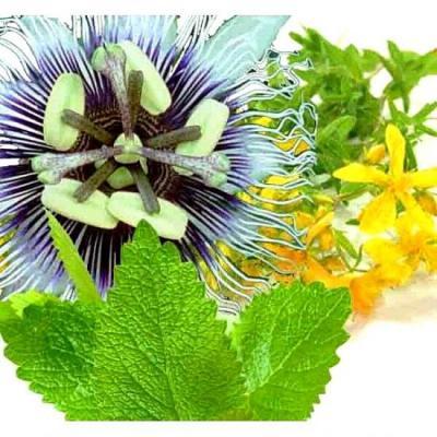 Herbiolys : Complexe : détentolys, 50 ml