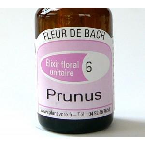 Unitaire n° 06 : Prunus (Cherry Plum), 10 ml, Hautes-Alpes, BIO