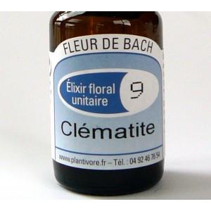 Unitaire n° 09 : Clématite (Clematis), 10 ml, Hautes-Alpes, BIO