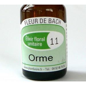 Unitaire n° 11 : Orme (Elm), 10 ml, Hautes-Alpes, BIO