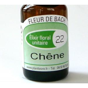 Unitaire n° 22 : Chêne (Oak), 10 ml, Hautes-Alpes, BIO