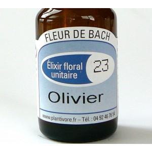 Unitaire n° 23 : Olivier (Olive), 10 ml, Hautes-Alpes, BIO