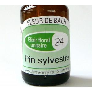 Unitaire n° 24 : Pin sylvestre (Pine) , 10 ml, Hautes-Alpes, BIO