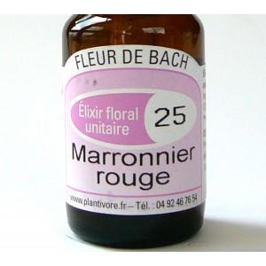 Unitaire n° 25 : Marronnier rouge (Red chestnut), 10 ml, Hautes-Alpes, BIO