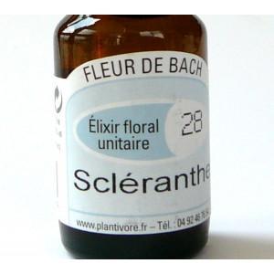 Unitaire n° 28 : Scléranthe (Scleranthus), 10 ml, Hautes-Alpes, BIO