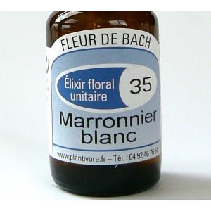 Unitaire n° 35 : Marronnier blanc (White chestnut), 10 ml, Hautes-Alpes, BIO