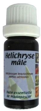 he-helichryse-male.jpg