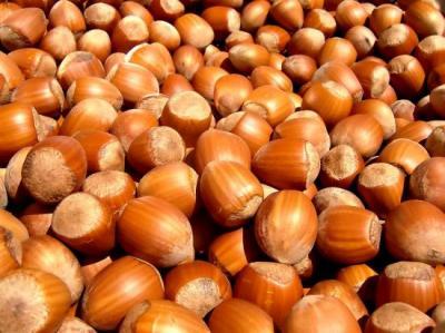 Noisette (Huile végétale), 50 ml