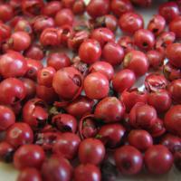 Pink peppercorns schinus terebinthifolius
